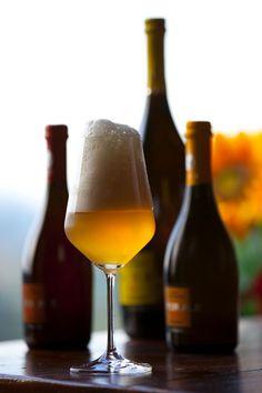 Birra Collesi - Apecchio