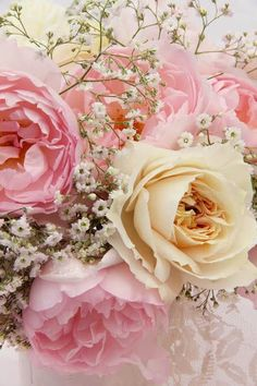 Dreamy Roses and Baby's Breath via ❤ Pink & Yellow ❤