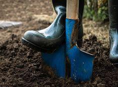 Estas hacer 10 cosas en marzo para tener el jardín perfecto