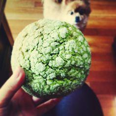 """""""#도쿄팡야 #말차메론빵 삿당. 먹는데 토리가 쳐다봄. #가로수길 #빵 #먹스타그램 #메론빵 #instafood #bread #melon #matcha #tokyopanya"""""""
