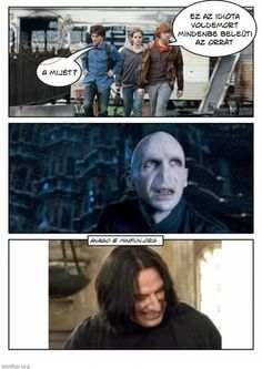 Harry Potter Humor, Voldemort, Draco Malfoy, Fangirl, Haha, Funny Pictures, Memes, Netflix, Naruto