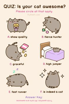 Pusheen the Cat is always awesome! Kawaii so cute, too! Fat Cats, Cats And Kittens, Crazy Cat Lady, Crazy Cats, Pusheen Love, Pusheen Gif, Pusheen Cakes, Simons Cat, Cat Comics
