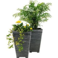 Buy Terraneuva Tall Square Planter - Pack of 2 at Argos.co.uk - Your Online Shop for Planters.