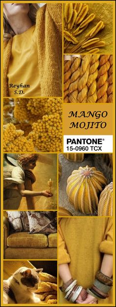 '' Mango Mojito '' Pantone Spring/ Summer 2019 Color '' by Reyhan S. Colour Schemes, Color Trends, Color Combos, Mango Mojito, Colour Combinations Fashion, Mood Colors, Color Collage, Beautiful Collage, Colour Board