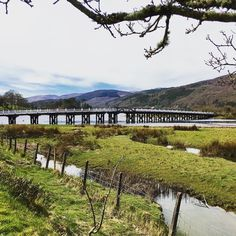 The Mawddach Trail in Snowdonia is this beautiful and the leaves aren't even out yet by emma_travels