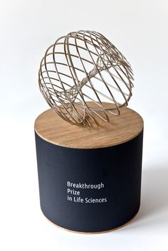 Breakthrough Prize trophy designed by Olafur Eliasson