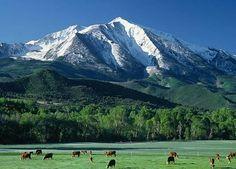 ranch horse farm   Colorado Ranches, Farms and Horse Property for Sale- Denver, Boulder ...