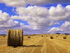 Bales and Clouds Near Sherbrooke, Saskatchewan, Canada. Photographic Print by Mike Grandmaison - Top Trends Beautiful Landscape Photography, Landscape Photos, Beautiful Landscapes, Beautiful Sky, Beautiful Scenery, Canadian Prairies, Farm Images, Old Windmills, Scenery Photography