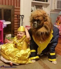 perro y bebe disfraz bella bestia