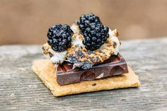 Creative S'mores: Marionberry S'more with Hazelnut Chocolate Backpacking Food, Camping Meals, Barbacoa, Marionberry, Roasting Marshmallows, Campfire Food, Vegan Crackers, Chocolate Hazelnut, Dessert Recipes