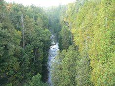 Eugenia Falls