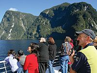 Take in the amazing wilderness of Doubtful Sound.