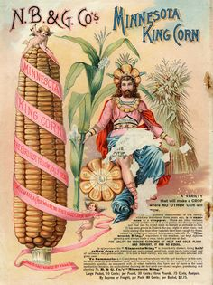 Vintage Minnesota King Corn, 10 cents for a large packet of seeds