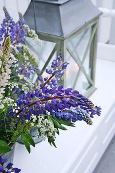 Die 204 Besten Bilder Von Kristin Flowers Gardens Und Plants