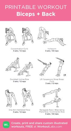 Biceps + Back: my custom printable workout by @WorkoutLabs #workoutlabs #customworkout