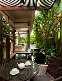 Meyer Road- Timur Designs  Las plantas altas