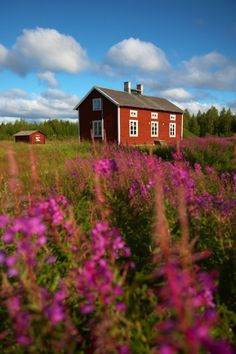 Kayaks and Cabins - Photo Essay Swedish Cottage, Wooden Cottage, Beautiful World, Beautiful Homes, Sweden House, Red Houses, Scandinavian Home, Farm Life, Barns