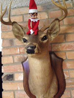 dead deer = scary, elf = scary :/ that makes this double scary! scary + scary = creepyyyyyyyyyyyy