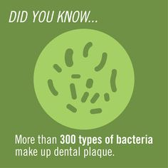 Did you know more than 300 types of bacteria make up dental plaque?