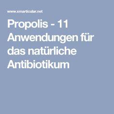Propolis - 11 Anwendungen für das natürliche Antibiotikum