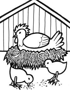 Planse de colorat animale domestice-Closca cu pui Farm animal coloring page for kids