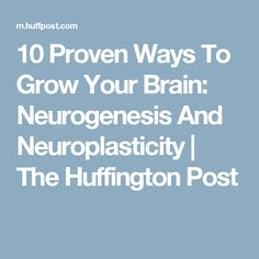 10 Proven Ways To Grow Your Brain: Neurogenesis And Neuroplasticity   The Huffington Post