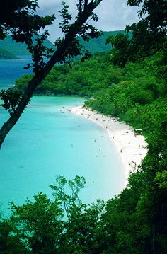 Trunk Bay, St. John, U.S. Virgin Islands. Been there. I want to go again. May be my favorite place on earth :)