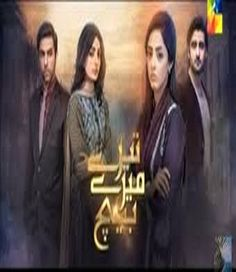 Tere Mere Beech Episode 1 on Hum Tv 29th November 2015