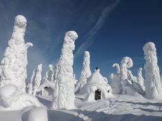 ⛷ Hiihtoretkellä ⛷ Palotunturin Salla  photo by 📸Ahti Kantola - Satu Karlin (@KarlinSatu) | Twitter