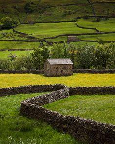 Stone Fence, Yorkshire Dales,England. photo via takeme