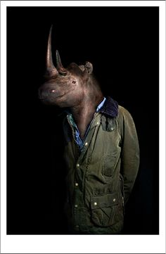 Fashionable Portraits Of Animals Dressed In Human Clothing