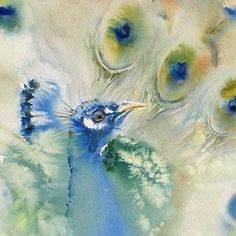 Love the subtle coloring. Watercolor Peacock, Peacock Painting, Watercolor Mixing, Peacock Art, Watercolor Animals, Watercolour Painting, Painting & Drawing, Watercolours, Bird Art