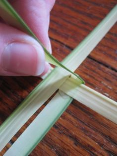wee little miracles: How to Make a Palm St. Brigid's Cross
