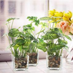 Fake Plants Decor, House Plants Decor, Faux Plants, Plant Decor, Potted Plants, Plant In Glass, Glass Planter, Plant In Water, Taro Plant