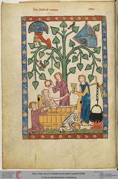 Cod. Pal. germ. 848  Große Heidelberger Liederhandschrift (Codex Manesse)  Zürich, ca. 1300 bis ca. 1340 Folio: 46v