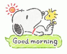 With Tenor, maker of GIF Keyboard, add popular Snoopy animated GIFs to your conversations. Share the best GIFs now >>> Gifs Snoopy, Snoopy Videos, Snoopy Images, Snoopy Pictures, Snoopy Quotes, Baby Snoopy, Snoopy Love, Good Morning Snoopy, Good Morning Gif