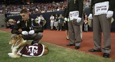 Who has the most awesome mascot? That would be Texas A & M