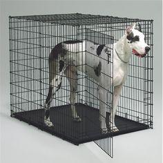 Tarter Elite Dog Kennel 6 X 10 X 10 Dkhdg By Tarter For