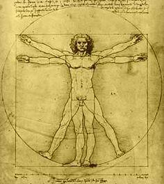 The UnMuseum - Leonardo's Sketch Books