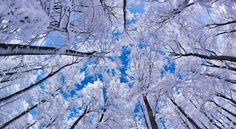 free winter download photos hd