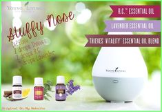 oil for stuffy nose Young living essential oils stuffy nose R. Diffuse 2 drops e. Young live essential oils nasal congestion R. Essential Oils Runny Nose, Young Essential Oils, Essential Oils For Colds, Essential Oil Diffuser Blends, Doterra, Young Living Oils, Diy, Young Young, Nasal Congestion