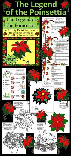 The Legend of the Poinsettia Christmas Activity Packet: Activity packet complementing the children's book, The Legend of the Poinsettia, which explains why the poinsettia is used at Christmas and gives the religious significance of the flower.   The Legend of the Poinsettia Packet Includes: * Comprehension Quiz  * Spanish Vocabulary Worksheet * Spanish Poinsettia Coloring Sheet * Poinsettia Construction Craft * Coloring Sheets  #Christmas #Poinsettia #Reading #Activities #Teacherspayteachers