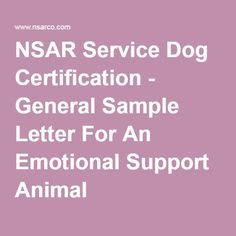 how to get a certificate for a therapy dog
