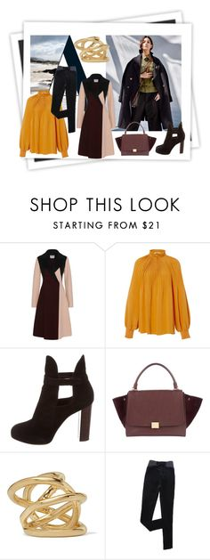 """a-line"" by snowmoon ❤ liked on Polyvore featuring GALA, Burberry, TIBI, CÉLINE and Jennifer Fisher"