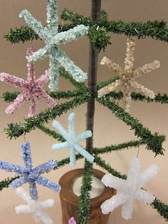 Crystallized snowflakes.  I make these with my students each year in time for the science fair!