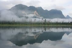 Kao Sok National Park, Thailand