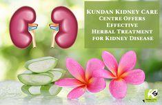 #Kundan #Kidney #Care #Centre Offers #Effective #Herbal #Treatment for #Kidney #Disease