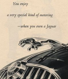 jaguar classic cars e type Jaguar Xj40, Jaguar F Type, Jaguar Cars, Grand Prix, Automobile, Jaguar Daimler, Jaguar Land Rover, British Sports Cars, Best Muscle Cars
