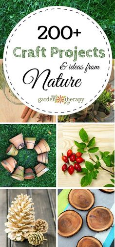 Craft Projects - Garden Therapy
