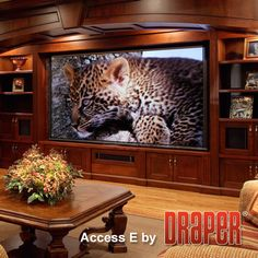 Home theater by Draper Inc. Finest motorized projection screens produced in America.